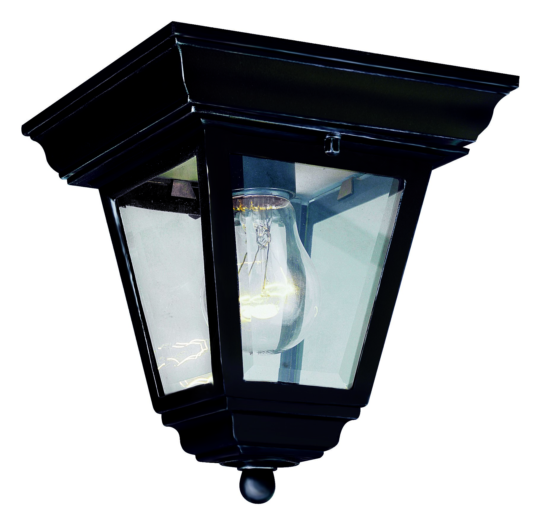 alysia transitional outdoor flush mount ceiling light