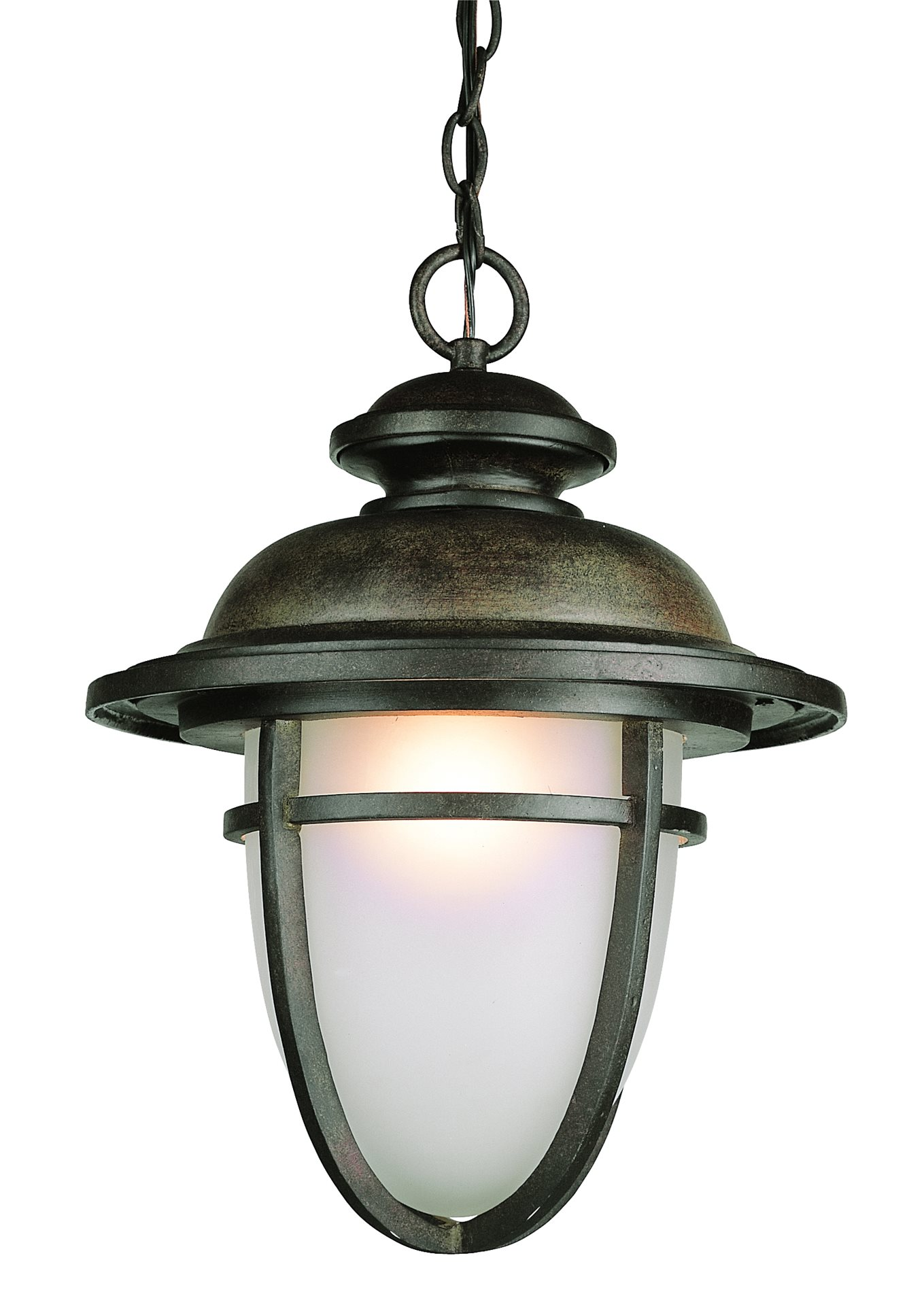 Trans Globe Lighting 5855 DR Coastal Transitional Outdoor Hanging Light TG 58