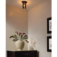 Energy Efficient Ceiling Lights