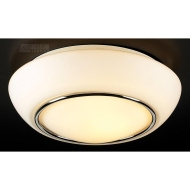 PLC Lighting Ceiling Lights